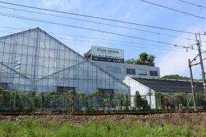 広島で観葉植物レンタルの山田農園とは