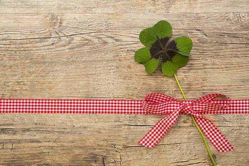 緑色がもたらす心理的効果|【広島で観葉植物のレンタルなら山田農園】