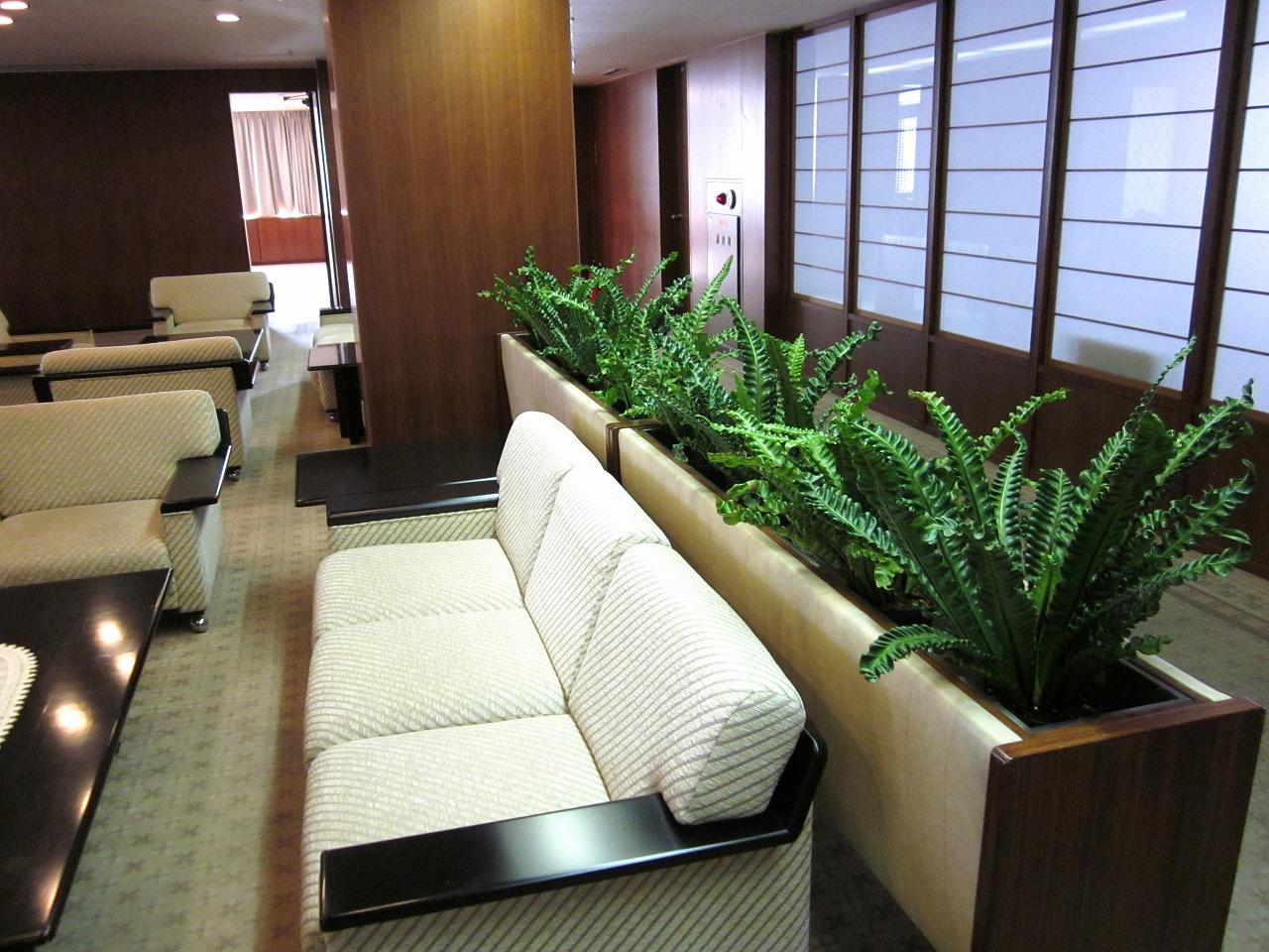 広島のオフィスで観葉植物のレンタルした設置事例